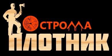 СК Костромаплотник